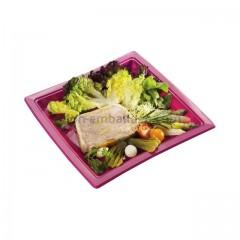 Assiette carrée fuchsia 24 cm en plastique - par 50