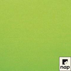 Serviette jetable céli-ouate 38 x 38 cm vert anis - par 50